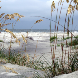 Photograph of North Carolina beach