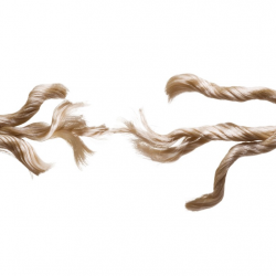 Photograph of frayed rope