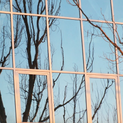 Reflection of Trees on an Office Building