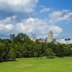 Raleigh skyline view from Dix Park