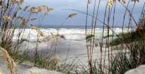 Beach near Wilmington
