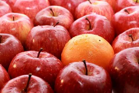 Extraordinary service differentiates like apples and oranges. (Image of an orange among apples)