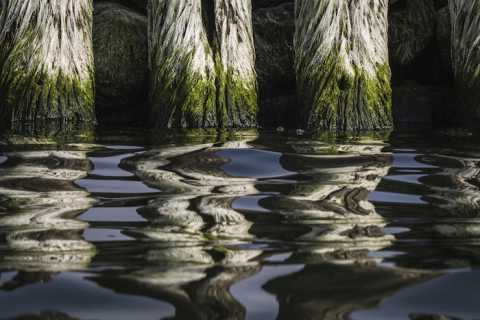 Wood piers reflected in water